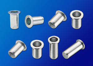 Changing Sun Metal Co., Ltd.</h2><p class='subtitle'>Rivet nuts, studs, stainless steel rivet nuts, aluminum rivet nuts, steel rivet nuts, brass rivet nuts, etc.</p>